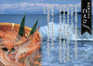 白エビむき身80g×3パック!刺身に!富山の刺身/富山の土産/お歳暮/お中元/父の日/ご贈答/敬老の日/富山のギフト/ご当地グルメ/お取り寄せ/えび/海老/エビ/シロエビ/富山湾の宝石/富山白えび