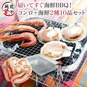 海鮮セット バーベキュー 2種10品 バーベキューコンロ 付( 洗うものがないんです ) ほたて 5枚 えび 5尾 【冷凍】 海鮮セット bbq バーベキュー 海鮮 (約2〜4人前) ほたて えび バーベキューグ