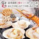 海鮮 バーベキューセット 3種 送料無料【冷凍】 赤エビ 10尾 & ホタテ 10枚 & あわび 5個【あす楽】海鮮バーベキューセット 海鮮BBQセット