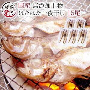 はたはた 干物セット 3尾×5パック【冷凍】 干物 1位 ハタハタ/鰰