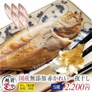 赤 かれい(越前がれい) 国産 干物セット 1尾×5パック【冷凍】干物 1位