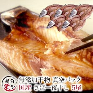 さば 国産 干物セット 1尾×5パック セット【冷凍】 干物 1位 鯖/サバ/一夜干し