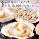 ホタテ 20枚入 送料無料 片貝 殻付き ウロ(中腸腺)処理済み バーベキュー BBQ パーティー 海鮮セット 海鮮鍋 セット…