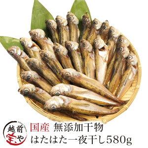はたはた 干物 580g入【冷凍】干物 1位 ハタハタ/鰰