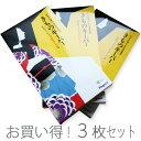 きものキーパー 送料無料 お買い得3枚セット 着物 きもの 保存用品 着物、帯 2点入ります【サイズ 長:約97.0cm 巾:約43.0cm】