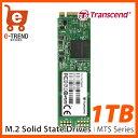 【送料無料】トランセンド TS1TMTS800 [SATA-III 6Gb/s MTS800 M.2 SSD 1TB]