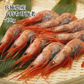 鳥取県産 子持ち 甘えび (お値段据え置き700gに増量中) 新鮮な甘海老を船内 冷凍 してあります もちろん生食用 甘くてねっとりした極上の美味しさ 冷凍 楽天ランキング1位
