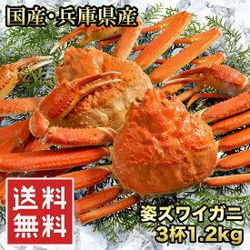 送料無料(国産 浜茹で香住がに(紅ズワイガニ) 3杯 1.2kg)蟹の町、兵庫県香住ブランドの商品です(脚折れがある場合があります)(冷凍)