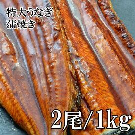 (全品5%還元) 【アウトレット価格】 うなぎ 蒲焼き 1kg 特大 無頭 2尾入 冷凍 うなぎ ウナギ 鰻 大型