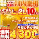 ジュース ゴールド ジューシーフルーツ ナダオレンジ グレープフルーツ