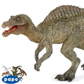 【メール便可】PAPO パポ社 ヤングスピノサウルス フランス、PAPO(パポ社)のDinosaurs ダイナソーシリーズ、恐竜のフィギュア。リアルな表情が魅力のフィギュアです。