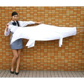 色塗りできる 白色布製こいのぼり 180cm / 手作り工作 工作イベント [北海道 沖縄 離島への配送不可]