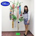 本格笹竹とミニ吹流し お得 七夕イベントセット 180cm / 装飾 飾り ディスプレイ