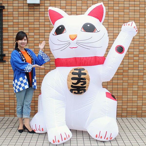 お正月装飾 ジャンボエアブロー 招き猫A 215cm/ 動画有
