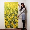 春の装飾 タペストリー 菜の花 防炎加工 L180cm / 飾り ディスプレイ