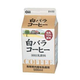 大山乳業 白バラコーヒー 500ml×5個 【冷蔵】