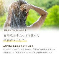 [白髪改善メリタン配合][髪と地肌の悩みを解消!]フラーレン・EGF・プロテオグリカンなど高級美容成分を使用したエイジングケア美容液シャンプー[しっとりタイプ]美容室専売アミノ酸[ヴェルモアクレンジング200ml]