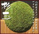 杉玉( 酒林 )30センチ [全国送料無料]