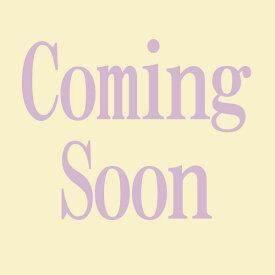 ダッフィー&フレンズ 毛布 ダッフィーのスウィート ドリームス シェリーメイ ステッルー ジェラトーニ ダッフィーグッズ 東京ディズニーシー限定