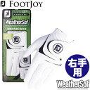 FOOTJOY (フットジョイ) WeatherSof グローブ (右手用) FGWF8LH