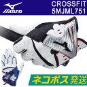 MIZUNO(ミズノ) CROSSFIT -クロスフィット- メンズ ゴルフ グローブ (左手用) 5MJML751 =