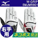 MIZUNO(ミズノ) W-GRIP -ダブルグリップ- メンズ ゴルフ グローブ (右手用) 5MJMR801 =