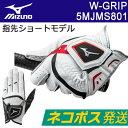 MIZUNO(ミズノ) W-GRIP -ダブルグリップ- メンズ ゴルフ グローブ (左手用)(指先ショートタイプ) 5MJMS801 =