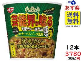 日清食品 オーベルジーヌ監修 欧風カレー 103g ×6個×2箱賞味期限2020/12/29