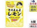 ライオン菓子 そのまんまレモン 25g×6袋 賞味期限 2019/10