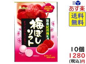 ライオン菓子 梅ぼしソフト 42g×10袋 賞味期限2020/05