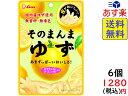 ライオン菓子 そのまんまゆず 23g ×6個 賞味期限2020/05