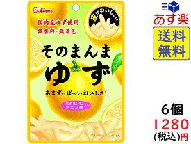 ライオン菓子 そのまんまゆず 23g ×6個 賞味期限2020/06