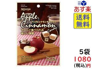 大丸本舗 さくっと食べられるアップルシナモンキャンディ 42g×5袋 賞味期限2020/08