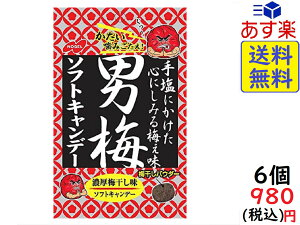 ノーベル 男梅 ソフトキャンデー 35g×6袋 賞味期限2020/10