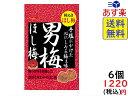 ノーベル 男梅 ほし梅 20g×6個 賞味期限2020/07