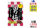 ノーベル 男梅 シート 27g×6個 賞味期限2020/07