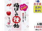ノーベル 梅ぼしの種飴 30g × 6袋 賞味期限2021/11