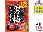 ノーベル 超男梅キャンデー 70g ×4個賞味期限2022/06