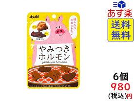 アサヒ やみつきホルモン 17g×6袋 賞味期限2020/03