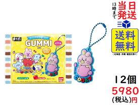 BT21ぷっくりラバマスグミ 12個入りBOX (食玩)賞味期限2022/04