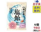 榮太樓總本舗 塩飴ほんのり梅味 80g ×4袋 賞味期限2022/03