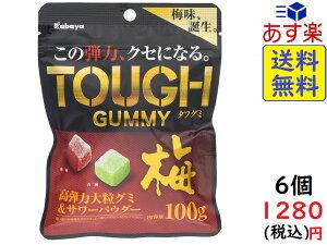 カバヤ食品 タフグミ 梅 100g ×6個 賞味期限2020/10