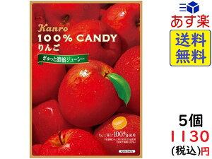 カンロ 100% キャンディ りんご 65g×5個 賞味期限2021/02