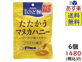 カンロ 健康のど飴たたかうマヌカハニー 80g×6袋 賞味期限2021/08