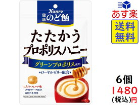 カンロ 健康のど飴 たたかうプロポリスハニー 80g ×6個 賞味期限2021/03