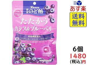 カンロ 健康のど飴 たたかう カシス & ブルーベリー 80g ×6袋 賞味期限2022/01