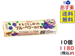 カンロ まるごとしぼったブルーベリーのど飴 11粒 ×10個 賞味期限2022/01