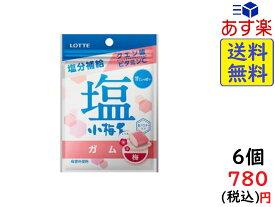ロッテ 塩小梅ガム 27g 6コ入り 賞味期限2020/09