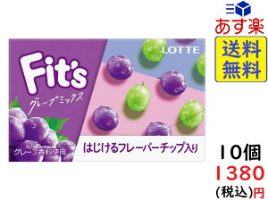 ロッテ Fit's フィッツ グレープミックス 12枚 ×10個