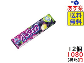 森永製菓 ハイチュウ グレープ 12粒×12個 賞味期限2021/03